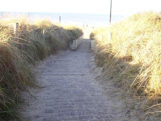 01 path to the sea.JPG.jpg