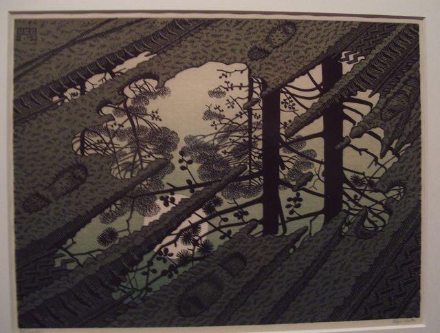 Escher Puddle (1952).jpg