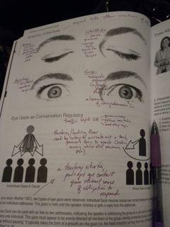 eye gaze notes.jpg