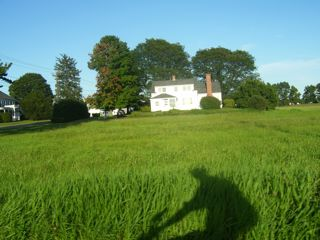 pastoral_and_bikeSHADOW.jpg