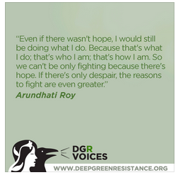 DGR quote from Arundhati Roy  2013-05-08 at 10.00.29 AM