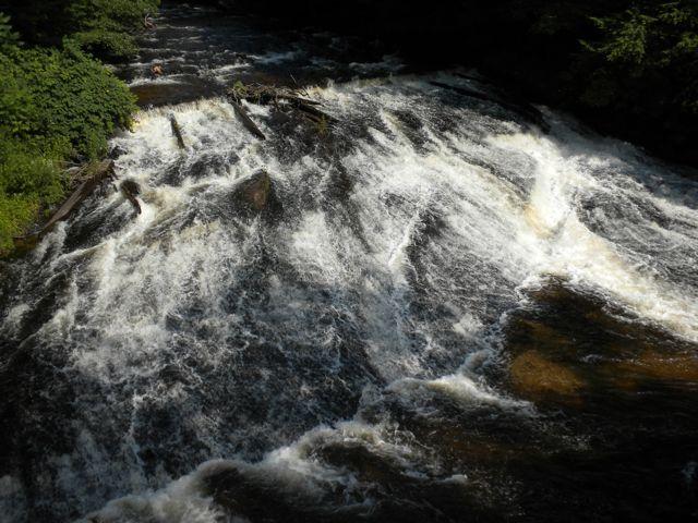 01 Saw Mill River rapids.jpg