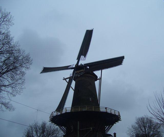 03 windmill BEST.JPG.jpg