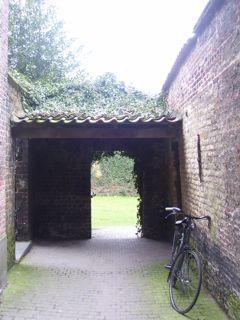 backyard in Brugge.jpg