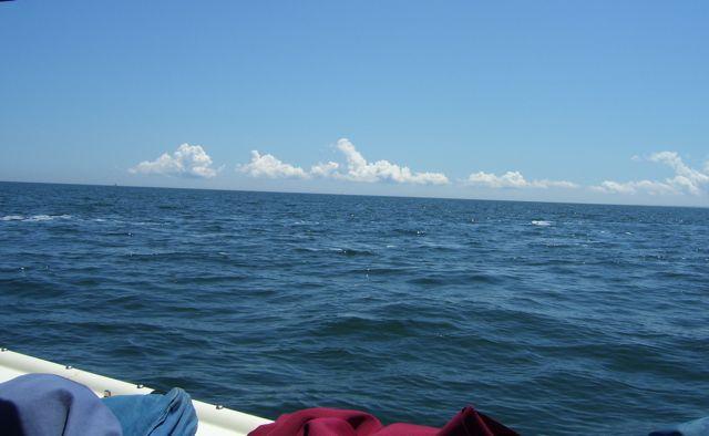 the open sea.JPG.jpg